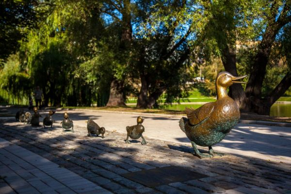 The-way_to_ducklings-1024x683