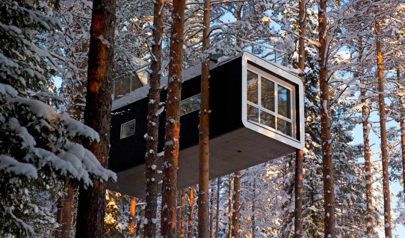 отель на деревьях в Швеции